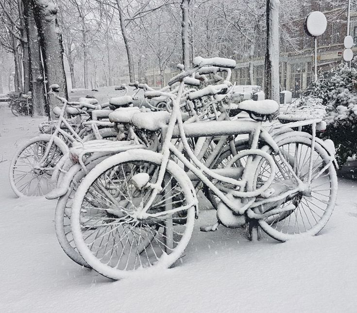 bicycle, transportation, mode of transport, land vehicle, stationary, snow, cold temperature, winter, parking, outdoors, day, bicycle rack, no people, nature, tree, tire