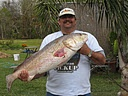 Great day of Bull red fishing 50 lbs fish.: Lbs Fish, Fish Adventure, Fish 50, Red Fish, 50 Lbs, Bull Red