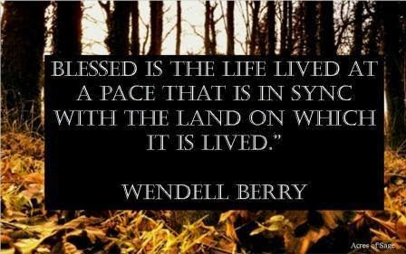 Words in the Week: Wendell Berry