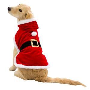 Best 25+ Dog christmas costumes ideas on Pinterest   Cat ...