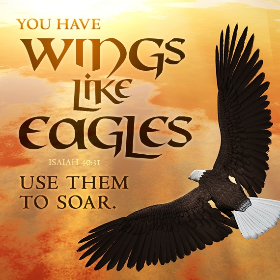 1000 images about eagles wings on pinterest london wing earrings and the lord. Black Bedroom Furniture Sets. Home Design Ideas
