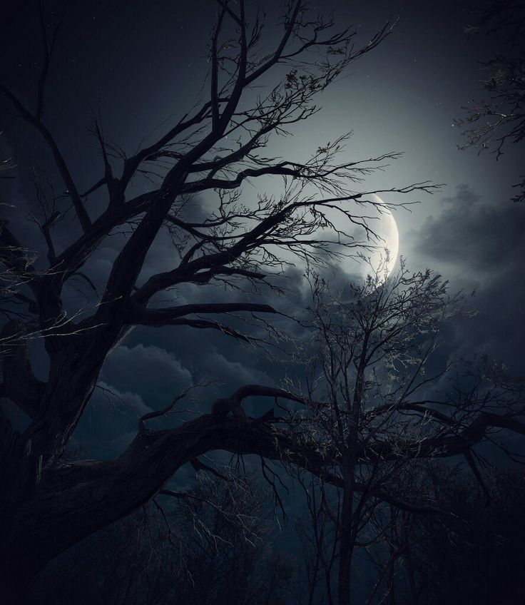red moon witcher 3 - photo #28
