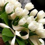 Significado de los tulipanes blancos en los ramos de novia