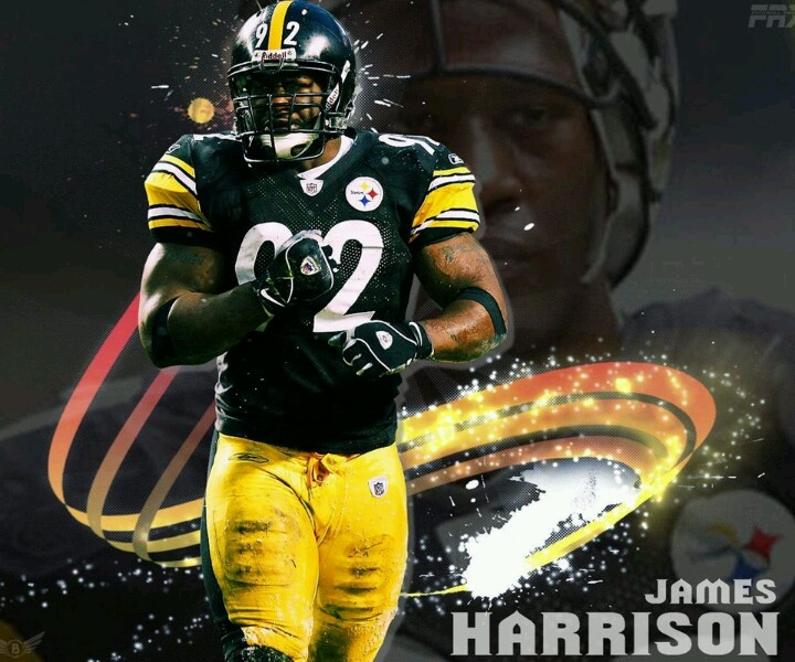 Harrison the Beast: Steelers Football, Steelers Stuff, Steelers The Steel, Nation Steeler, Thing Steelers, Pittsburgh Steelers, Football Team, Steelers Girl, Steelers 3