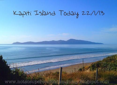 Not So Super Scottish Mummy: Kapiti Island Today 22/1/13 (featuring Queen Elizabeth Park)