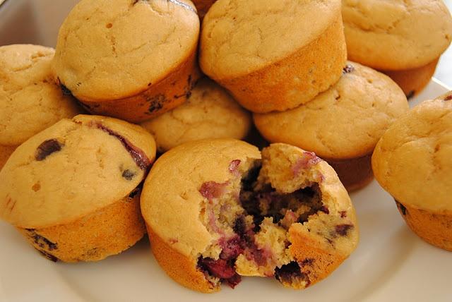 Lemon Blueberry Ginger Muffins   delicious food   Pinterest