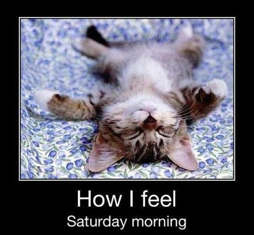 Funny Saturday Quotes: Quotes About Working On Saturday. QuotesGram
