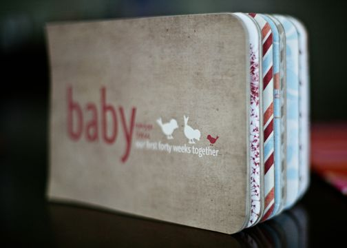 Documenting pregnancy, (Baby: Our first 40 weeks together)