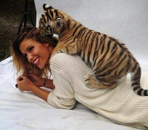 Dukai Regina #dukairegina #tiger