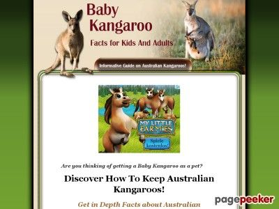 cool Baby Kangaroo Facts For Kids And Adults  Baby Kangaroo Facts For Kids And Adults       http://www.babykangaroofactsforkidsandadults.com review [ad_1] My Book Covers Kangaroos From A To Z... http://showbizlikes.com/baby-kangaroo-facts-for-kids-and-adults/