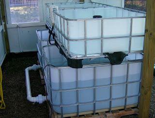 The Aquaponics Gardener: IBC Tote Tank Aquaponics