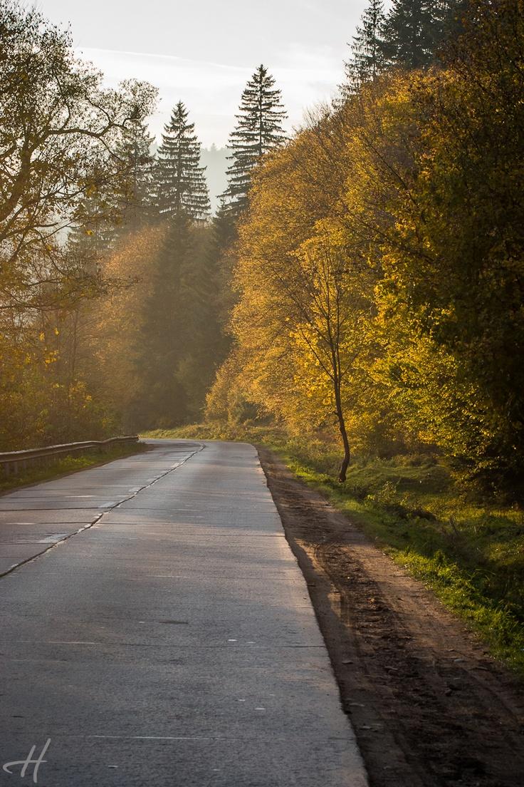 Bucovina - foto by Doru Halip