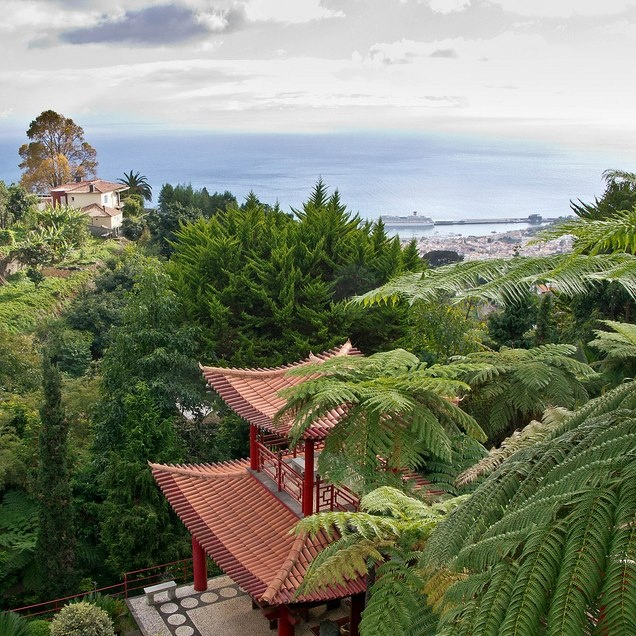 View from Monte Palace Tropical Garden. Madeira Isalnd  Photo by Brian Negus (via Flickr)