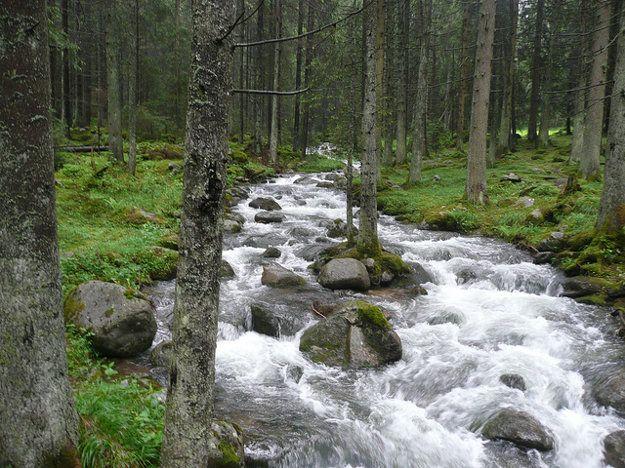 Demänovská dolina.