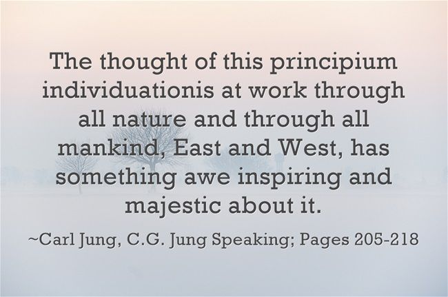 The thought of this principium individuationis at work through all nature and through all mankind, East and West, has something awe inspiring and majestic about it.