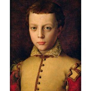 Ferdinando de'Medici as a youth |  Original painting by Agnolo Bronzino