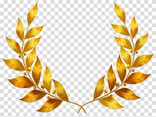 Brown Leaf Wreath Illustration Gold Leaf Bay Laurel Golden Laurel Leaves Transparent Background Png Wreath Illustration Laurel Leaves Transparent Background