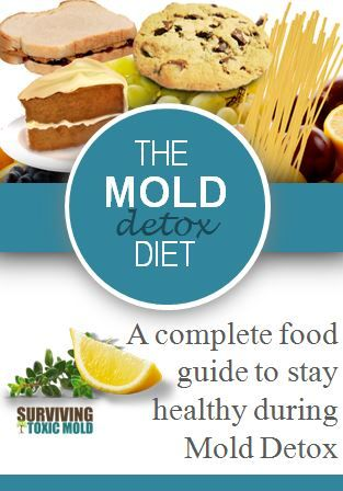 Surviving Toxic Mold | Mold Exposure | Mold Illness | Mold Testing | Mold Prevention - Mold Detox Diet