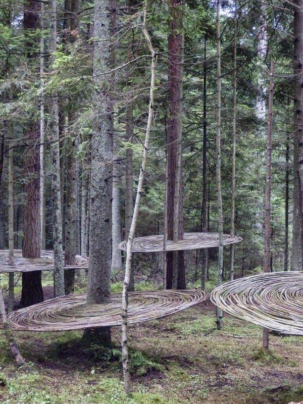 'Tomografia drzewa' (Tree tomography) (2014) by Polish land artist Mirosław Maszlanko (b.1963). source: now in art post 4 Landart Festival 2014. via Contemporary Basketry: In the Trees