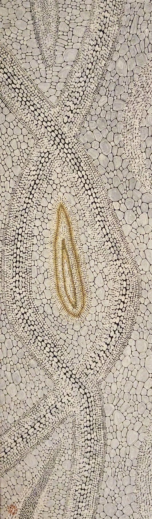 Kurun Warun / Dry Riverbed (3A) - 9078434