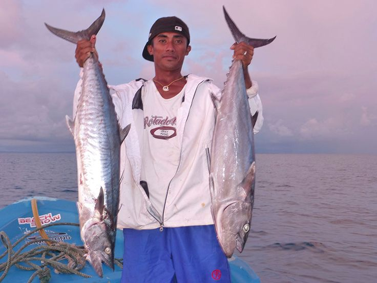 Asu Island sits on the edge of the hinako's archipelago. World class fishing can be enjoyed straight off the island on board Asu's 28' sports fishing boat. We do trolling, jigging and popping and what ever you catch ends up on your dinner plate that night.