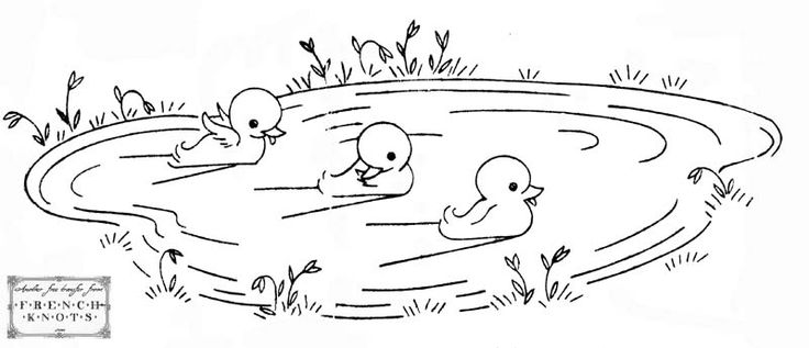Ponds Free Coloring Pages Pond Coloring Page