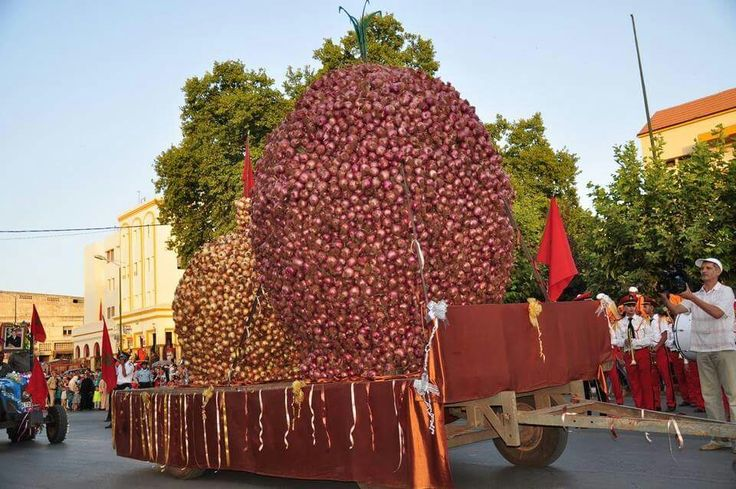 Festival of onions in El Hajeb, Morocco