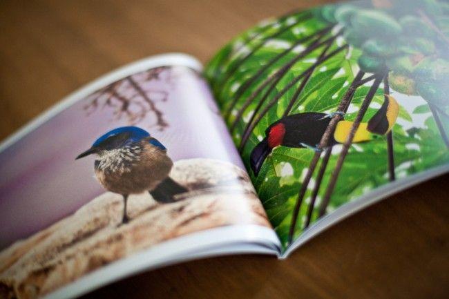 Imprimer un livre photo