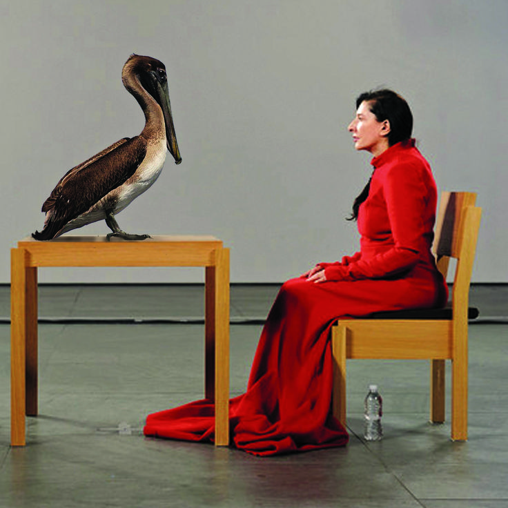"""""""The Brown Pelican Is Present (for Marina Abramovic)"""" -- design a magnolia gown set as well as a pelican inspired set"""