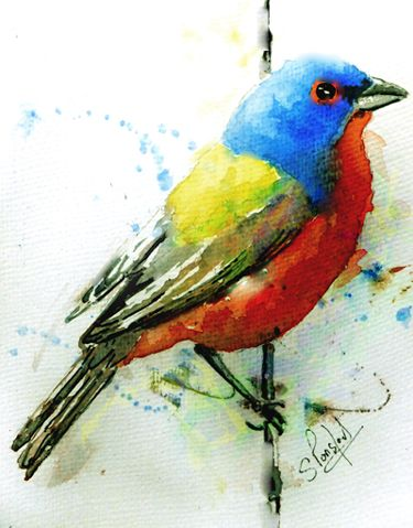 Colourful bird - WetCanvas