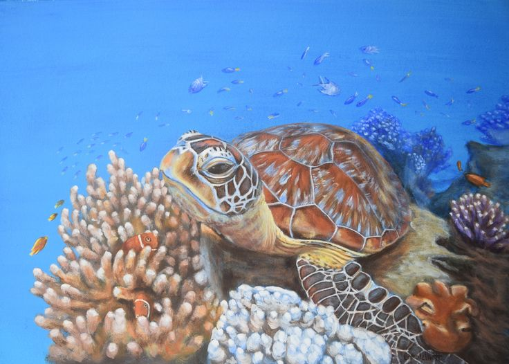 Check it out! Carole Elliott Artist is completing a series of paintings in support of the ReefHQ Barrier Reef Turtle Hospital. #ReefHQ #GreatBarrierReef #Turtle #Acrylic #Art #originalpainting #carolelliott7