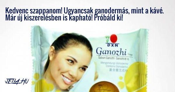 Ganozhi szappan - a kis barna ganodermás szappan