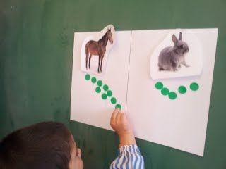 Projecte els cavalls