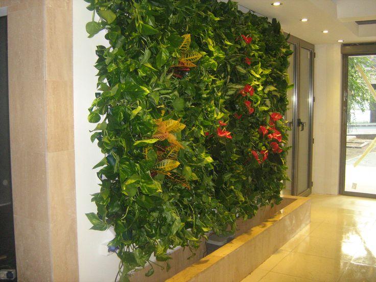 Pereti Vegetali - Gradini Verticale www.greenwalls.ro