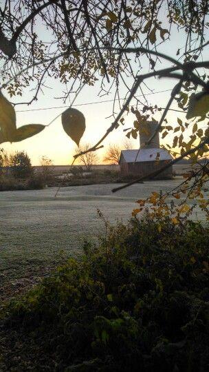 Frosty Fall Morning 2014