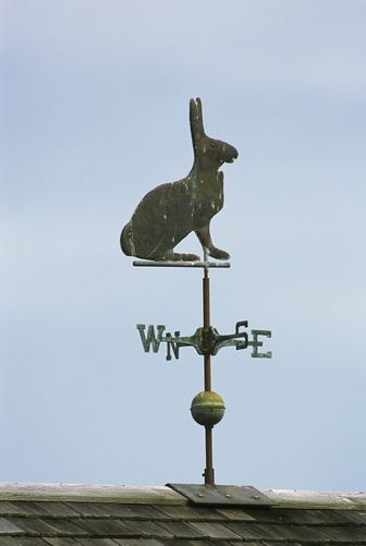 """Rabbit weathervane/  """"What a view from here!"""" :D"""