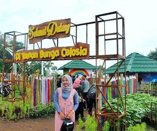 Taman Bunga Celosia Semarang