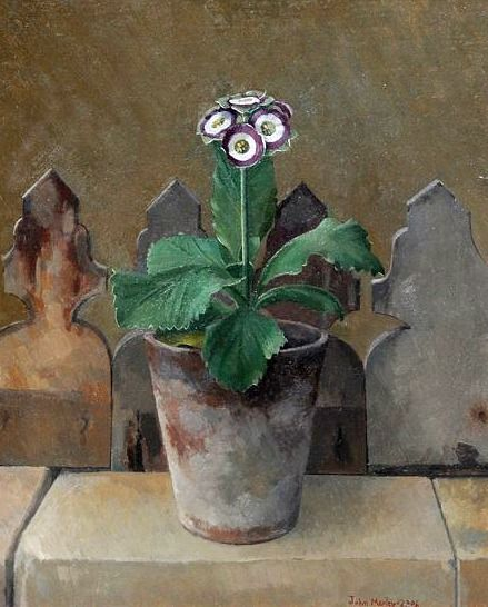 Green Edged Auricula 'Minley Manor' (2006) by John Morley