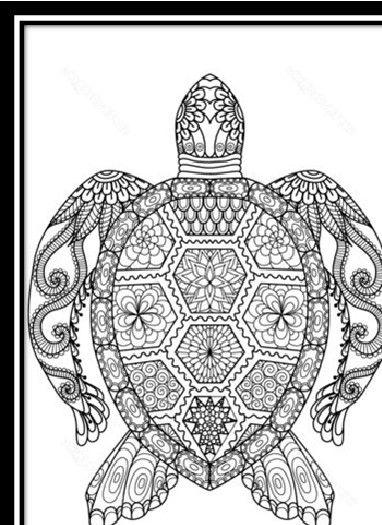imagenes de animales para colorear en linea | DIBUJOS ...