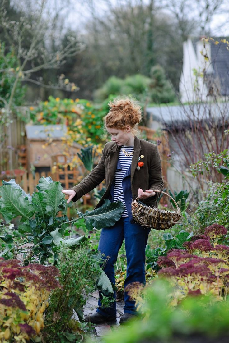 BBC Gardeners' World | Jason Ingram | Bristol photographer of gardens, food, people & interiors.