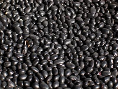 Black bean nutritional facts