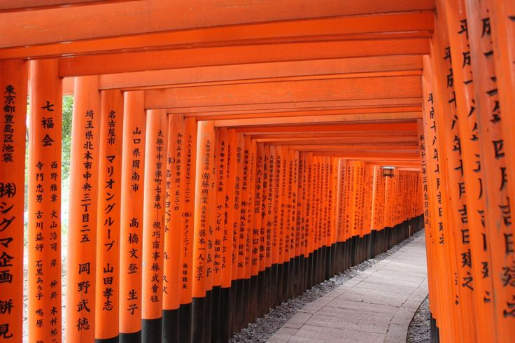 Visit Japan to see a thousand Tori gates. Fushimi Inari, Kyoto, Japan.