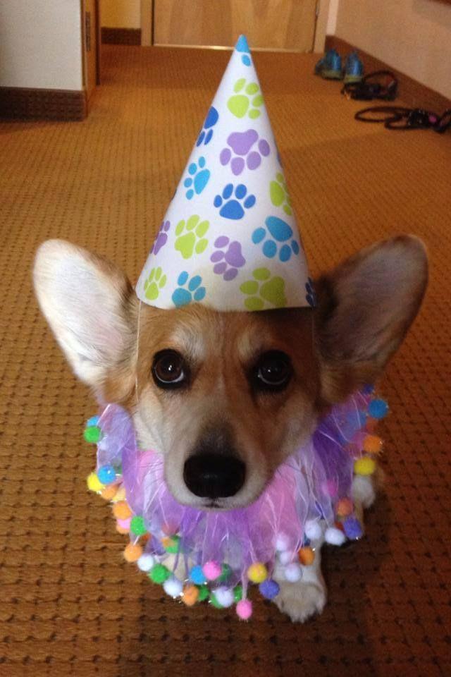 Happy birthday Princess!