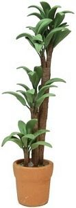 Tropical Plant in Clay Pot - This miniature Tropical Plant in a Clay Pot is an