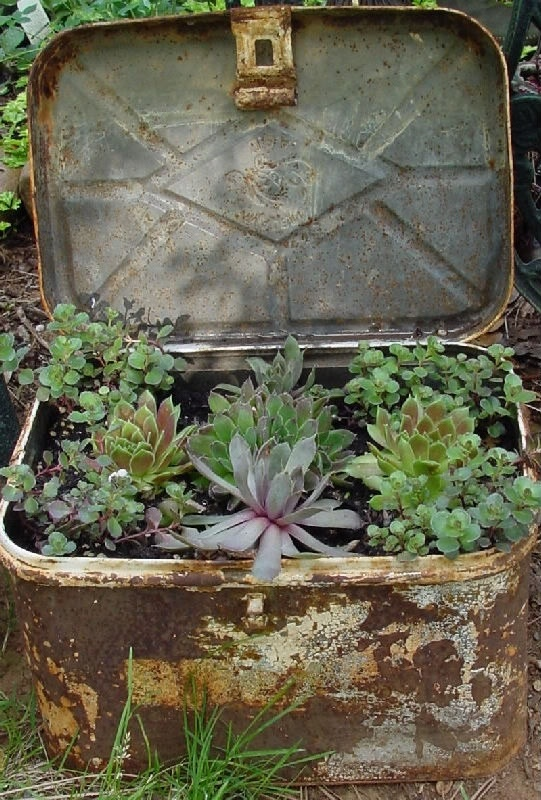 17 beste afbeeldingen over plantenbakken bloembakken terraspotten op pinterest goede idee n - Origineel tuin idee ...