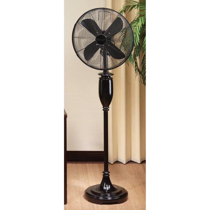 Black Decorative Floor Fan