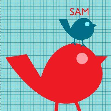 Een stoer geblokt geboortekaartje met een rood en een blauw vogeltje op de voorkant