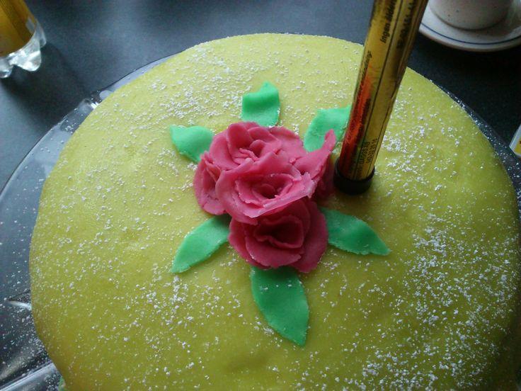 Hemmajord prinsess tårta