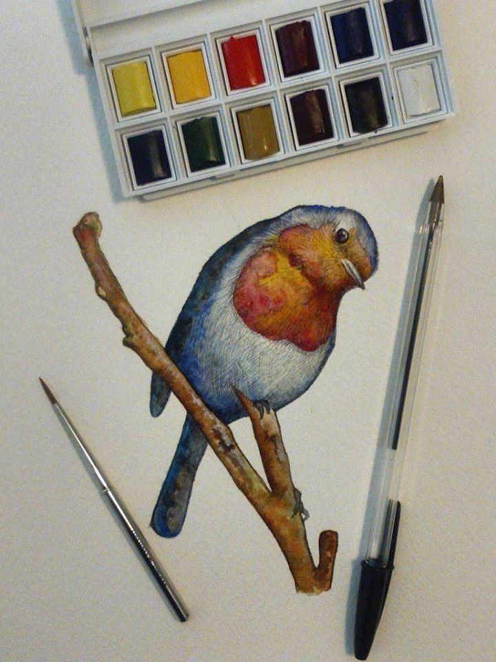 Artigiano: Simona Breccia Disegno di un Pettirosso. Realizzato con Tecnica Mista, acquerello e pastello, su carta 20 x 30 cm. #Ductilia
