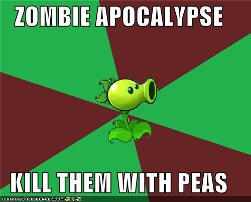 I love Plants Vs Zombies!